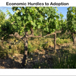 Economic Hurdles pic